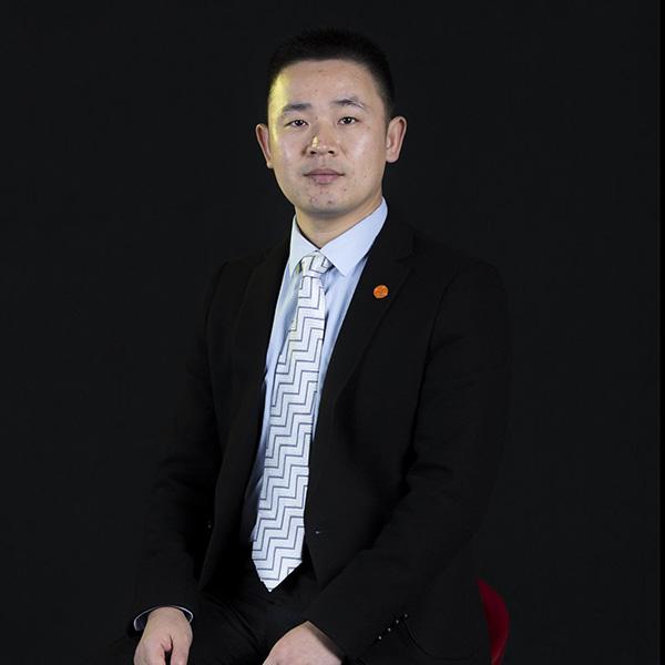 广东项目顾问:龚树仑